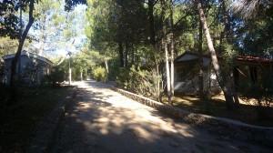 Naselje Bucanje