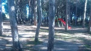 Otroska igrala v objemu borovcev